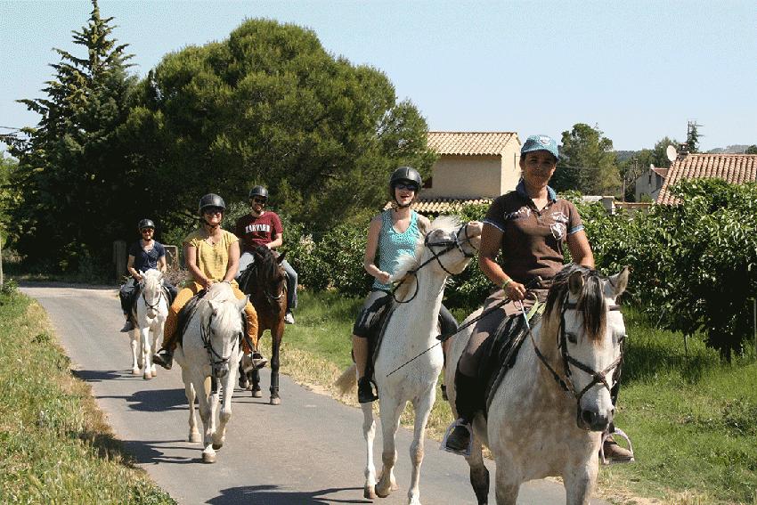 promenade cheval gard